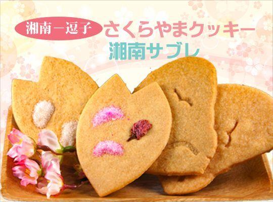 画像2: さくらやまクッキー/湘南サブレ 7枚入り